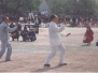 1991 International Tai Chi Conference, Yongnian